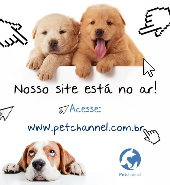 Site_Canal Petchannel