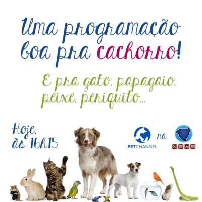 PETCHANNEL NA RECORD (1)